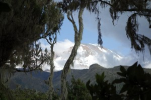 First view of Mt. Kilimanjaro