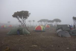 Shira Camp, Kilimanjaro